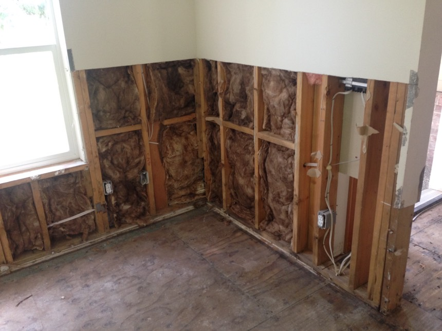 Moldbuster Is A Full Service Mold Remediation Mold